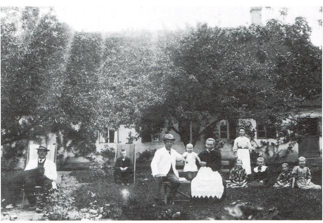 Sommerdag i haven